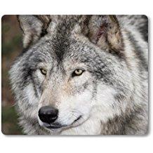 alfombrilla de lobo gris
