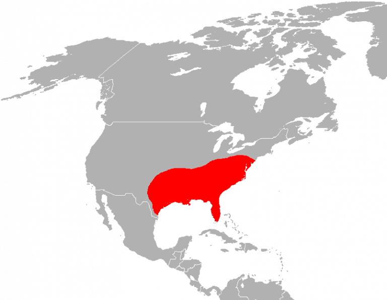 mapa de la distribución del lobo rojo