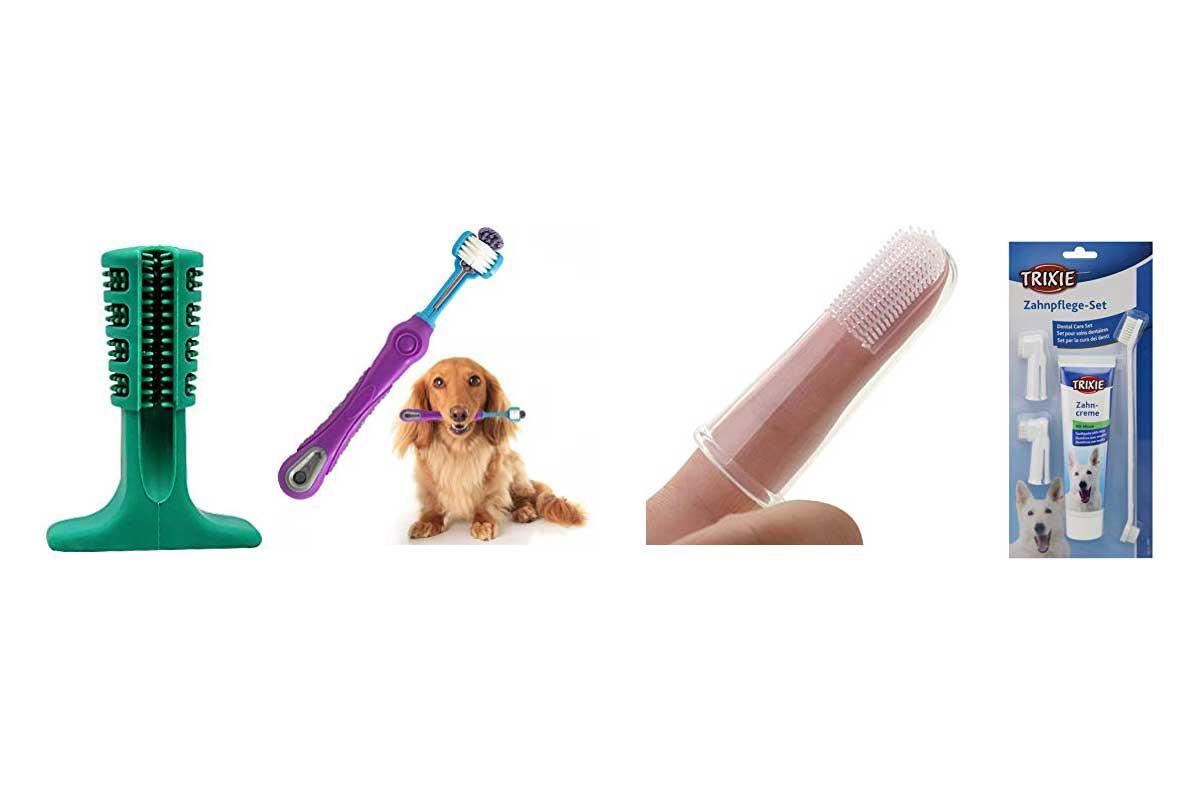cepillos-de-dientes-para-perros