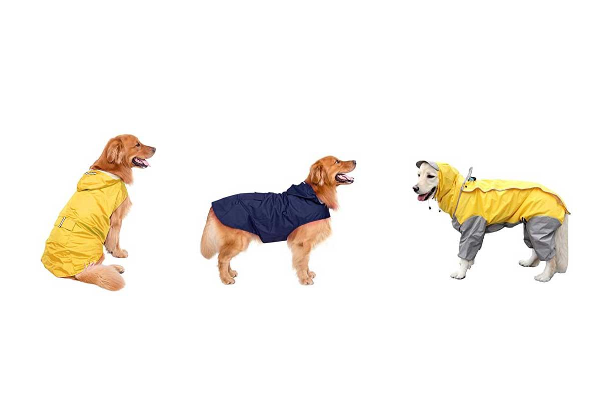 chubasquero-para-perros